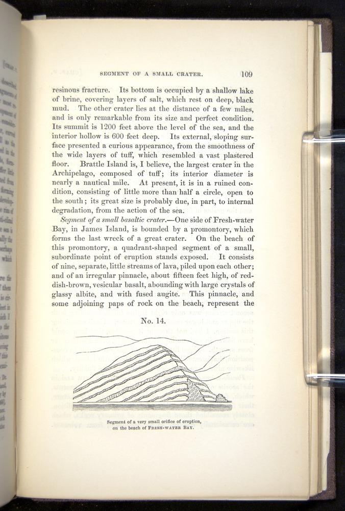 Image of Darwin-F272-1844-00109