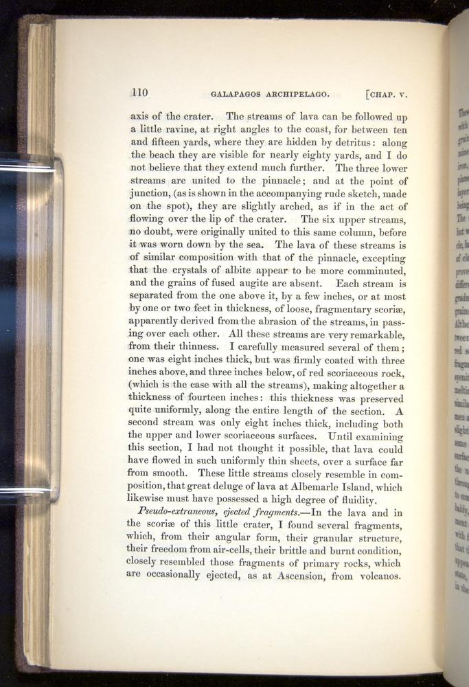 Image of Darwin-F272-1844-00110