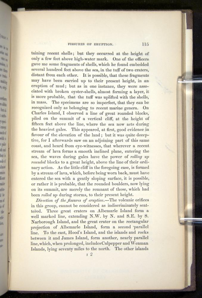 Image of Darwin-F272-1844-00115