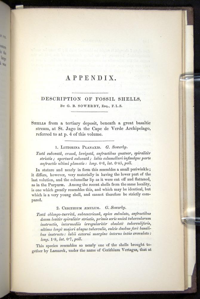 Image of Darwin-F272-1844-00153