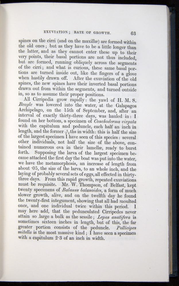 Image of Darwin-F339.1-1851-063