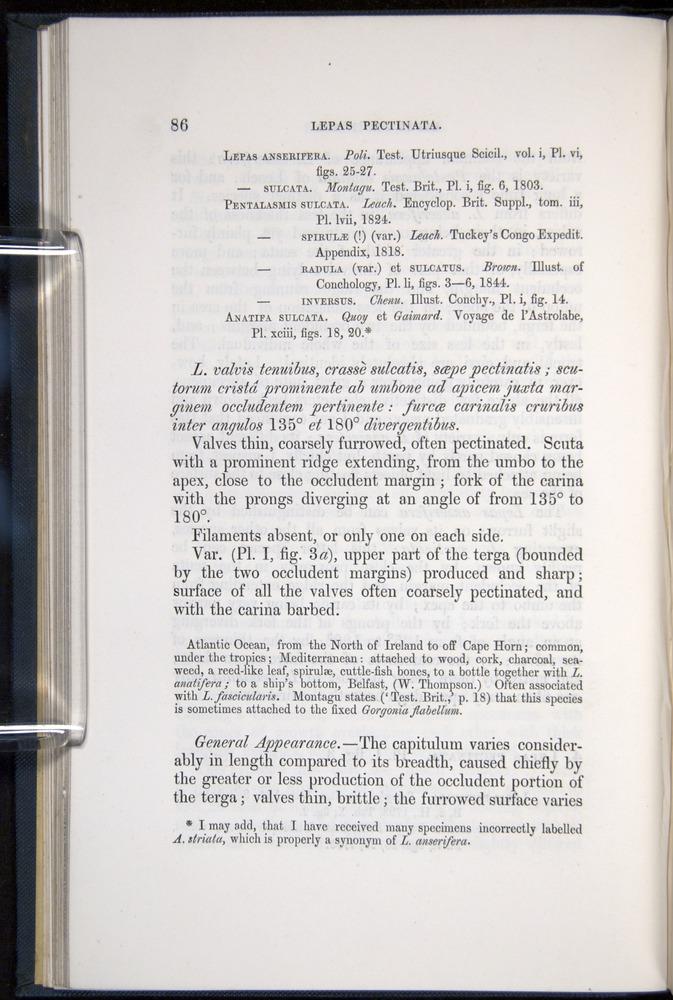 Image of Darwin-F339.1-1851-086