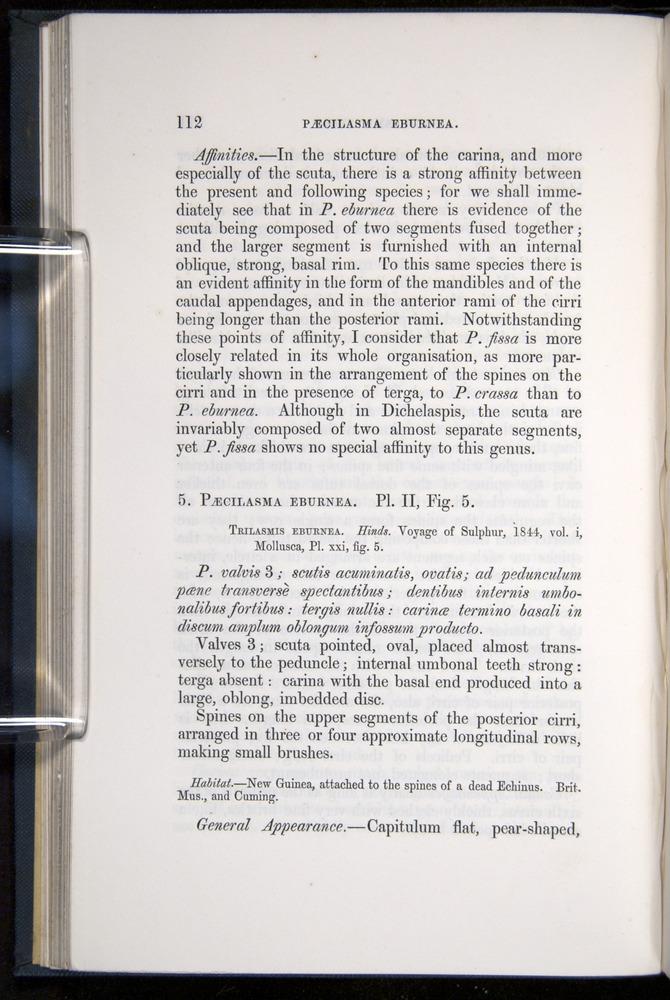Image of Darwin-F339.1-1851-112