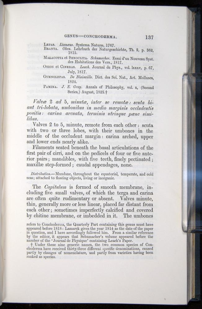 Image of Darwin-F339.1-1851-137