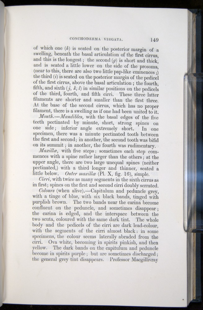 Image of Darwin-F339.1-1851-149