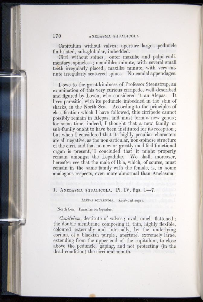 Image of Darwin-F339.1-1851-170