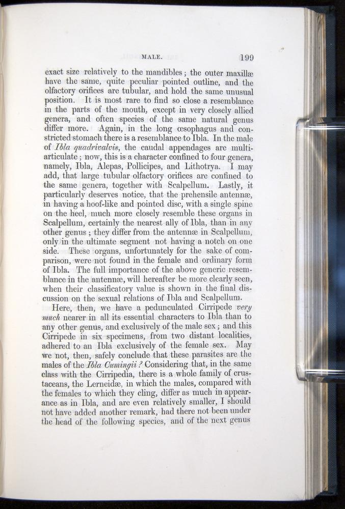 Image of Darwin-F339.1-1851-199