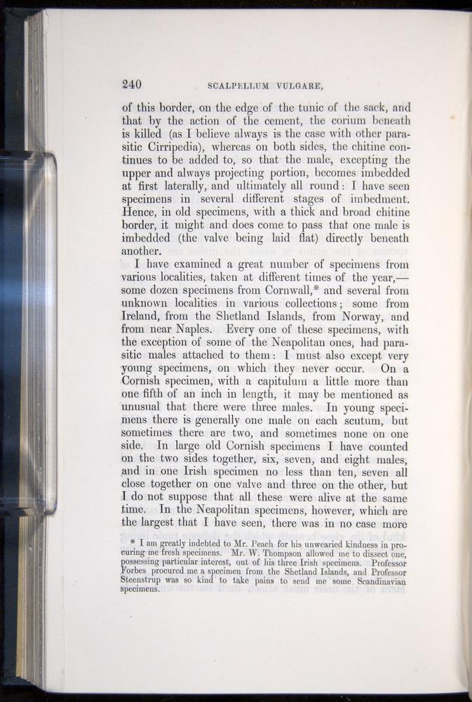 Image of Darwin-F339.1-1851-240