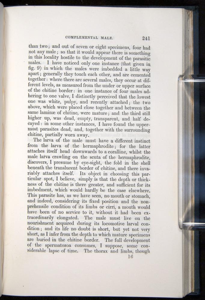 Image of Darwin-F339.1-1851-241