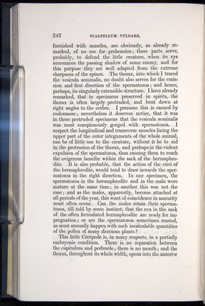 Image of Darwin-F339.1-1851-242