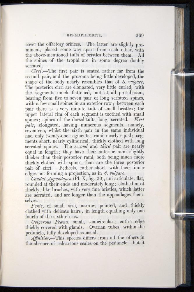 Image of Darwin-F339.1-1851-269