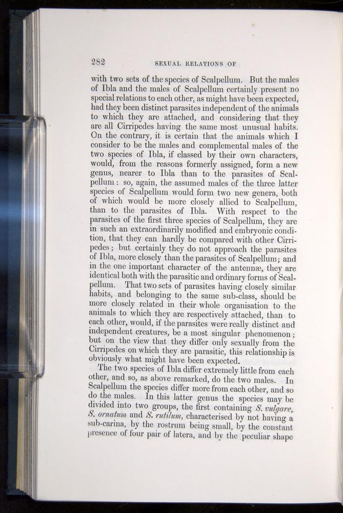 Image of Darwin-F339.1-1851-282
