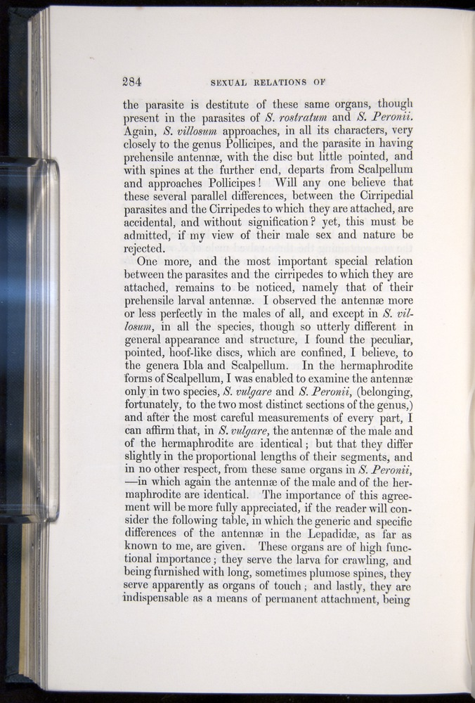 Image of Darwin-F339.1-1851-284
