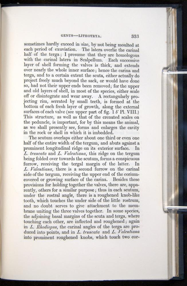 Image of Darwin-F339.1-1851-333