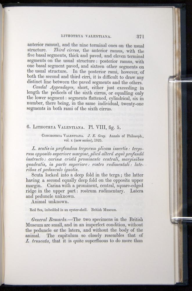 Image of Darwin-F339.1-1851-371