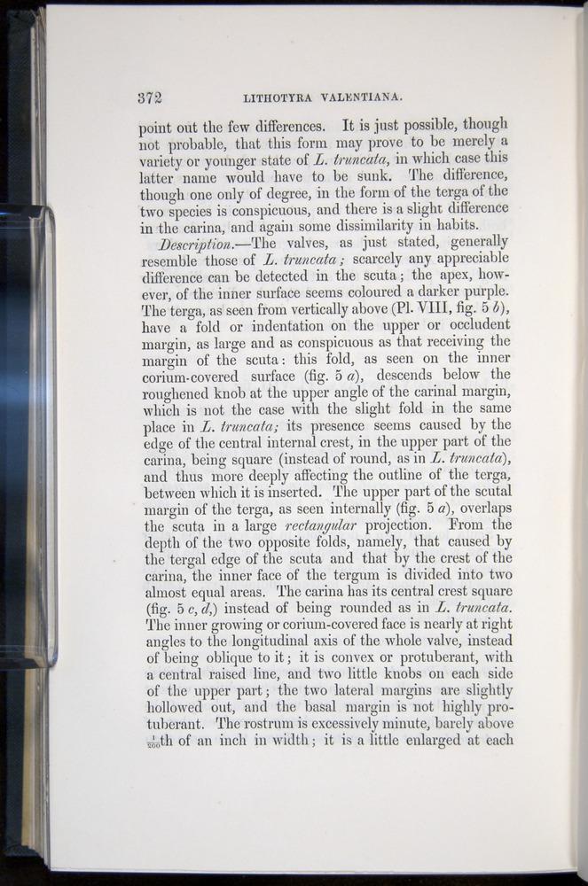 Image of Darwin-F339.1-1851-372
