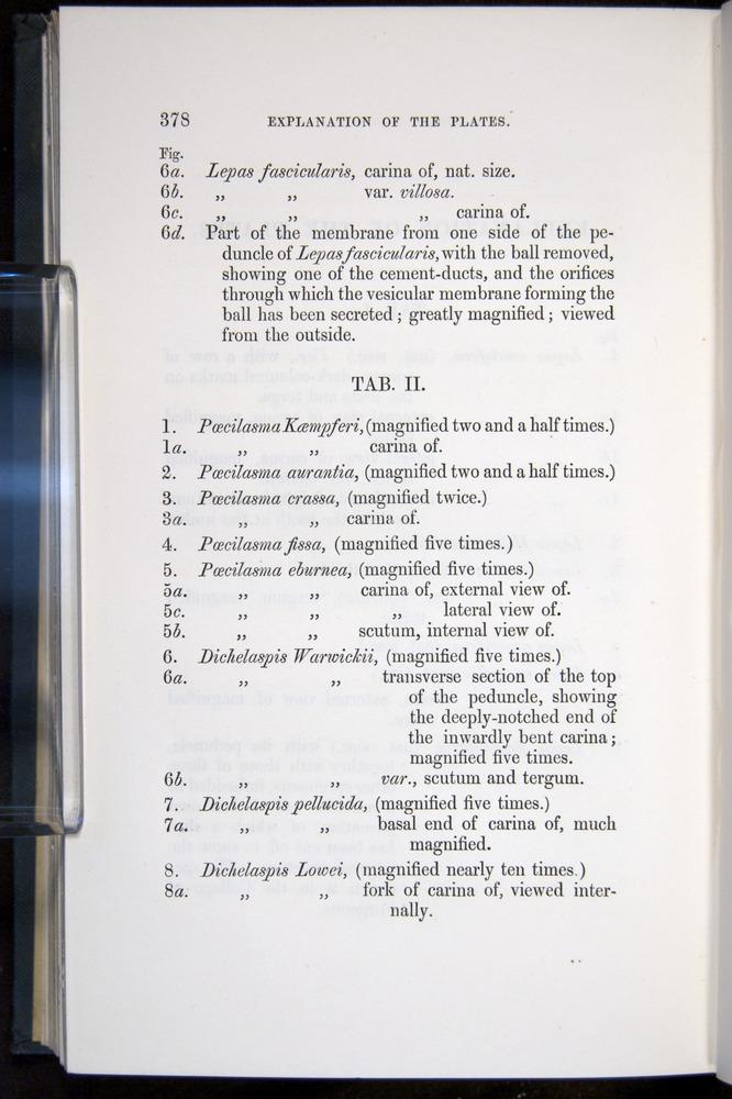 Image of Darwin-F339.1-1851-378