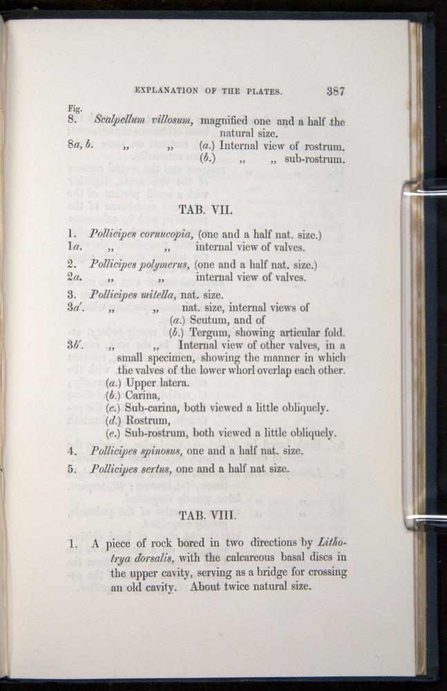 Image of Darwin-F339.1-1851-387