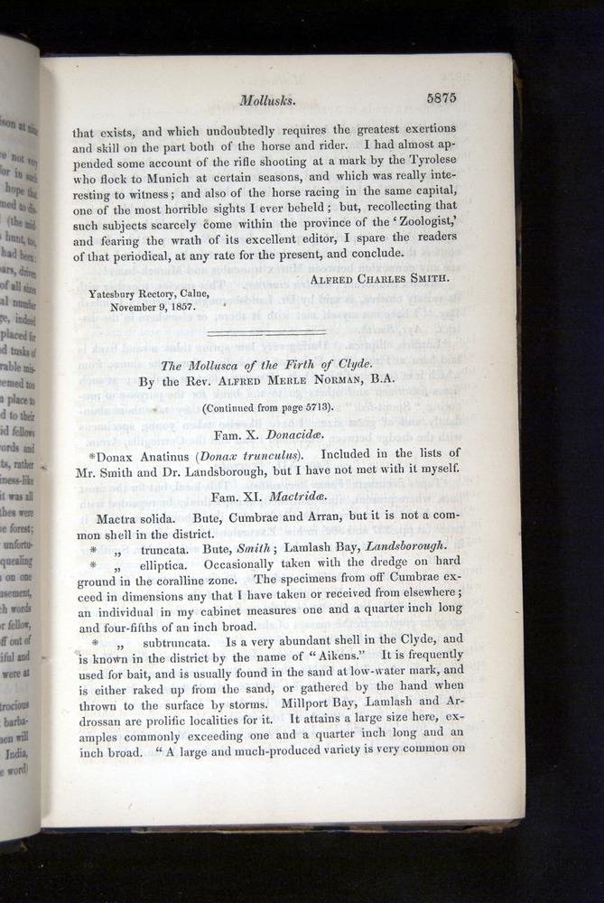 Image of Darwin-F349-1858-Zoologist-v16-05875