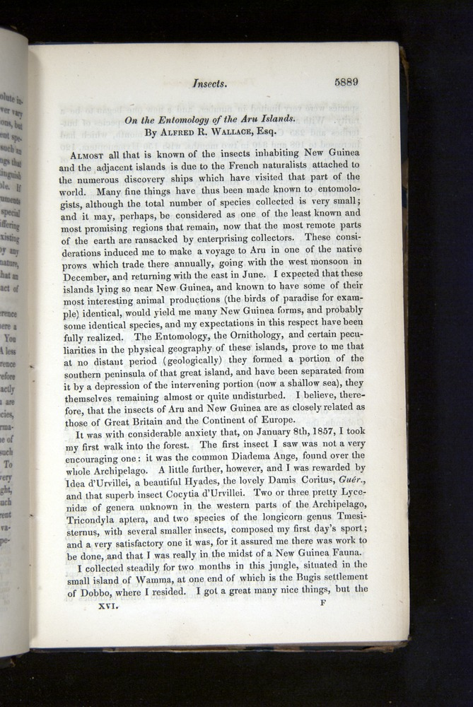 Image of Darwin-F349-1858-Zoologist-v16-05889