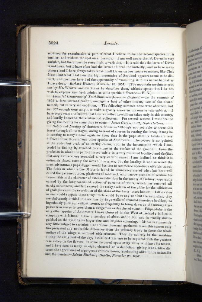 Image of Darwin-F349-1858-Zoologist-v16-05924