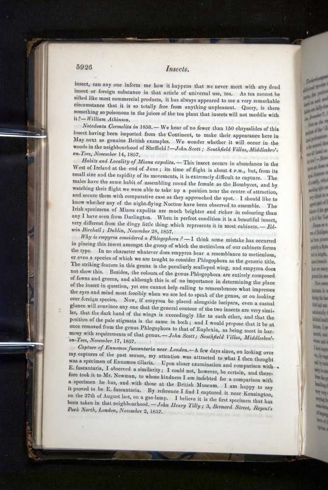 Image of Darwin-F349-1858-Zoologist-v16-05926