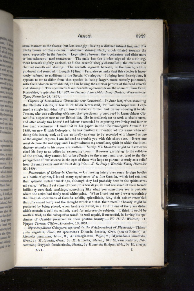 Image of Darwin-F349-1858-Zoologist-v16-05929