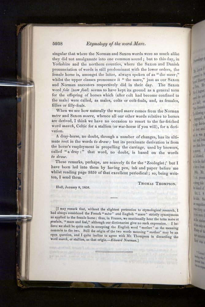 Image of Darwin-F349-1858-Zoologist-v16-05938