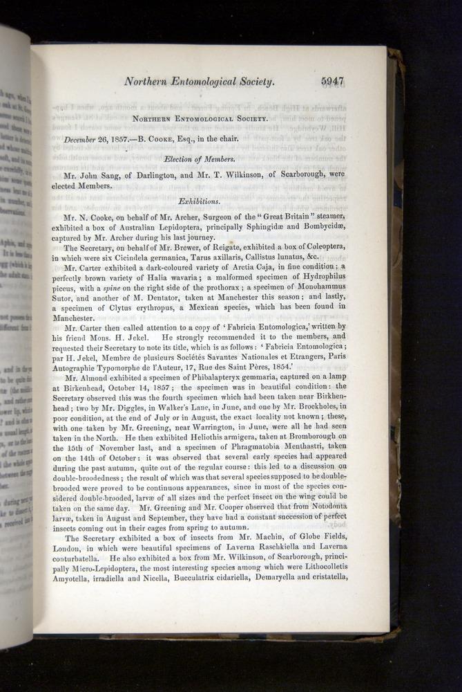 Image of Darwin-F349-1858-Zoologist-v16-05947