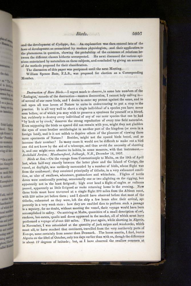 Image of Darwin-F349-1858-Zoologist-v16-05957