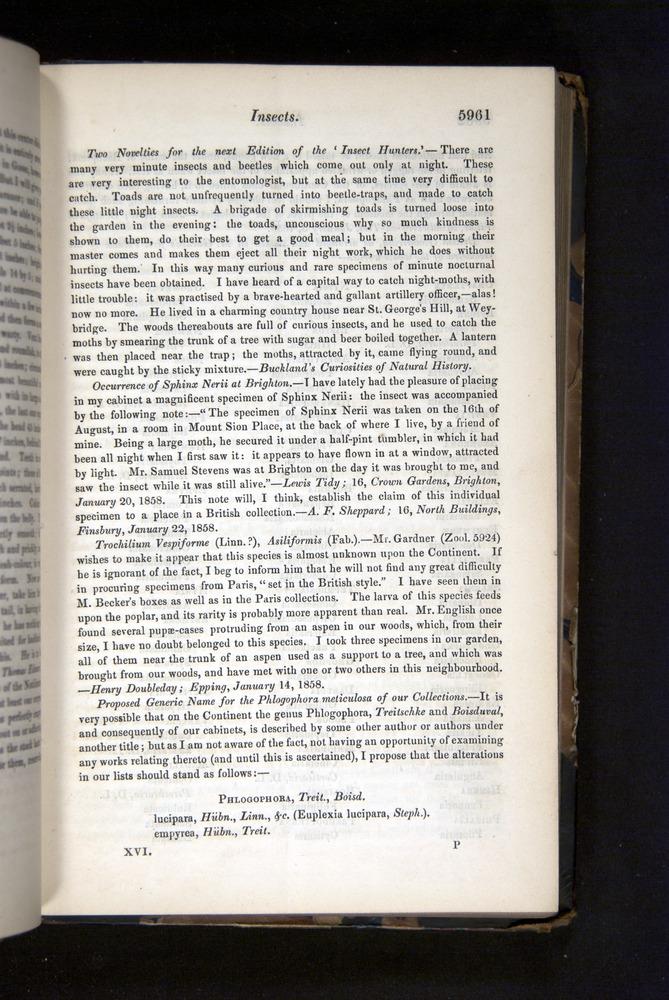Image of Darwin-F349-1858-Zoologist-v16-05961