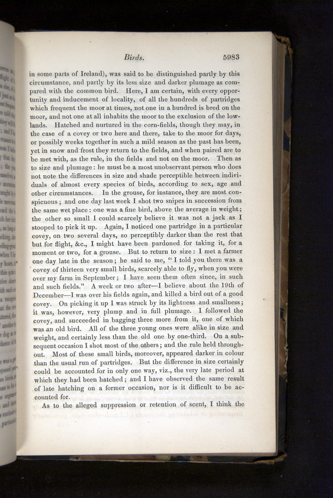 Image of Darwin-F349-1858-Zoologist-v16-05983
