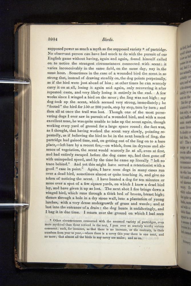 Image of Darwin-F349-1858-Zoologist-v16-05984
