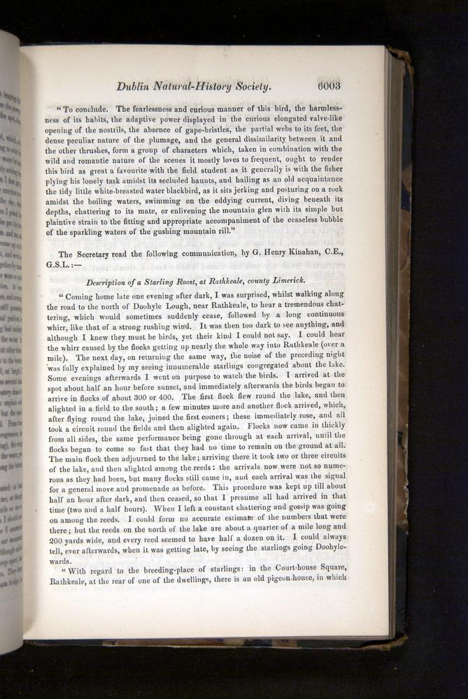 Image of Darwin-F349-1858-Zoologist-v16-06003