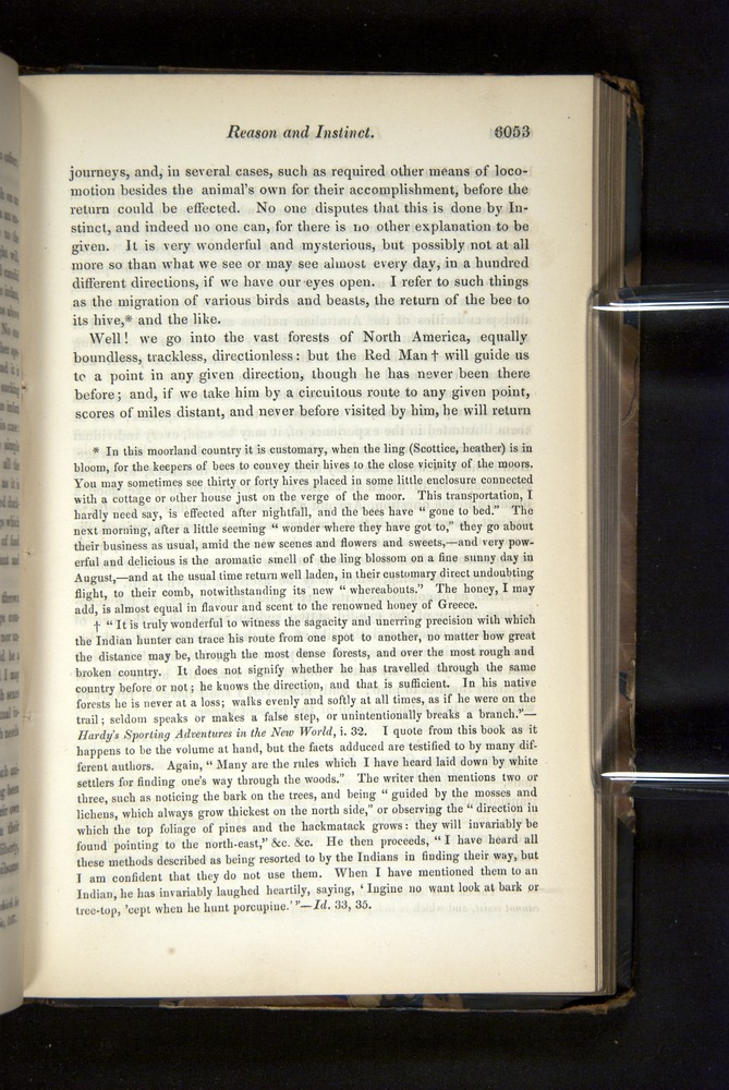 Image of Darwin-F349-1858-Zoologist-v16-06053