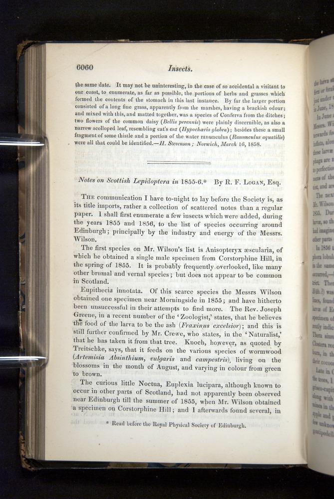 Image of Darwin-F349-1858-Zoologist-v16-06060