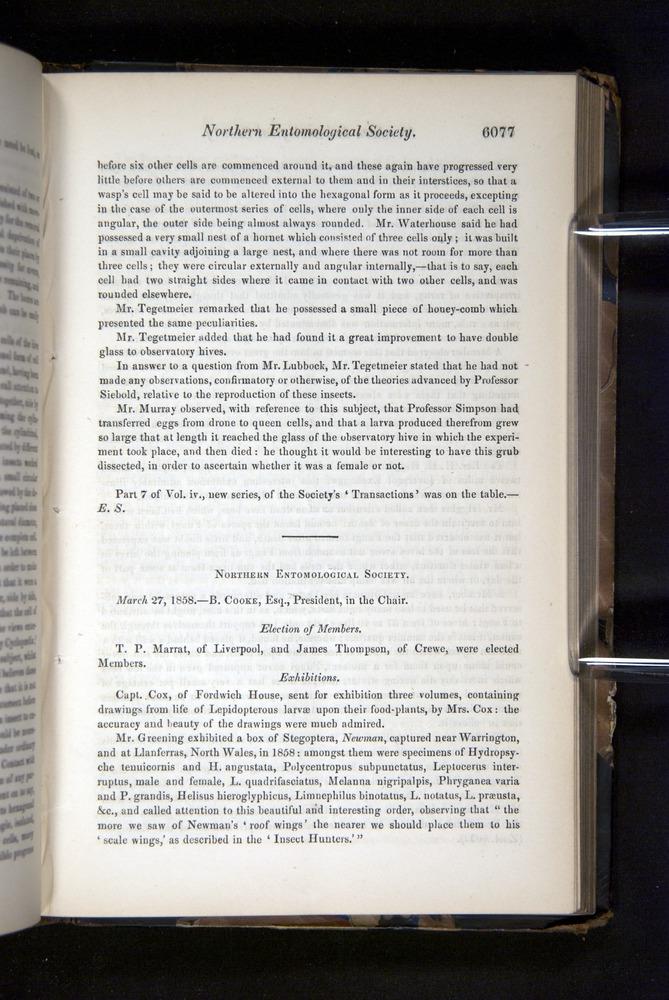 Image of Darwin-F349-1858-Zoologist-v16-06077