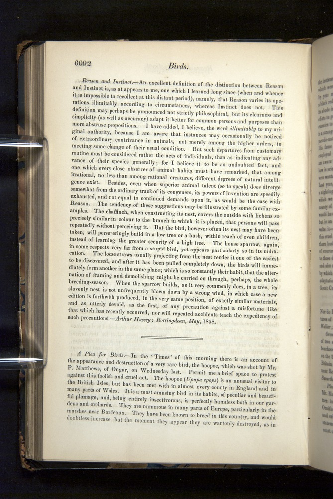 Image of Darwin-F349-1858-Zoologist-v16-06092