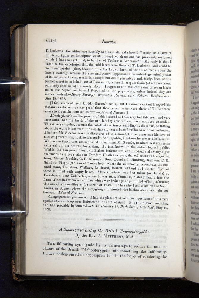 Image of Darwin-F349-1858-Zoologist-v16-06104