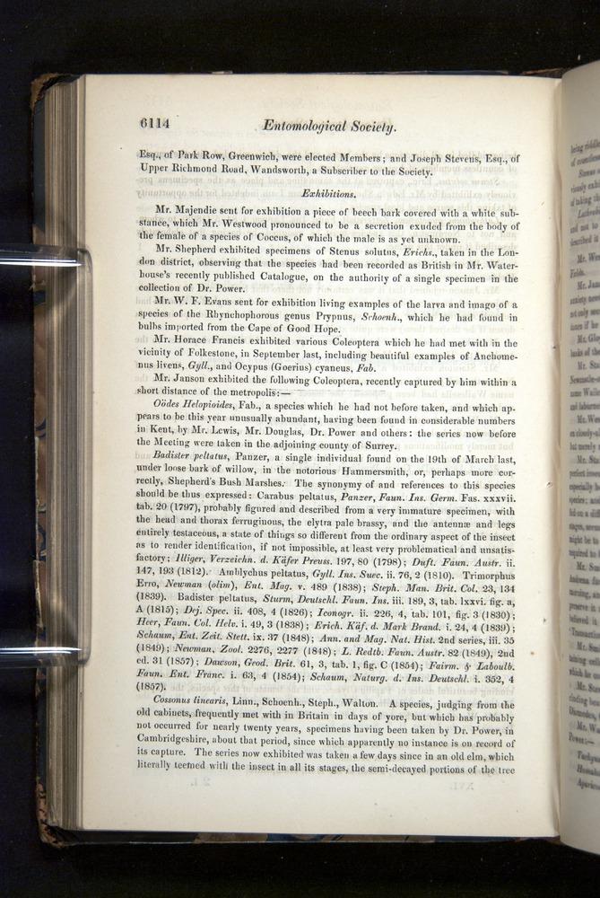 Image of Darwin-F349-1858-Zoologist-v16-06114