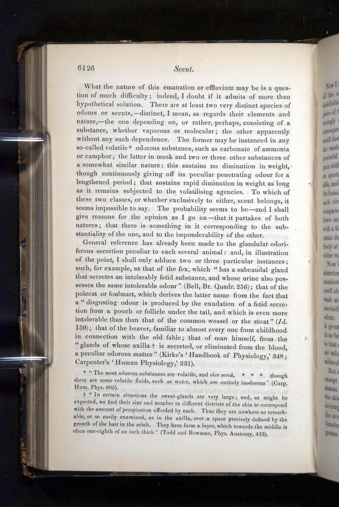 Image of Darwin-F349-1858-Zoologist-v16-06126