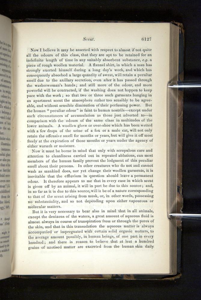 Image of Darwin-F349-1858-Zoologist-v16-06127