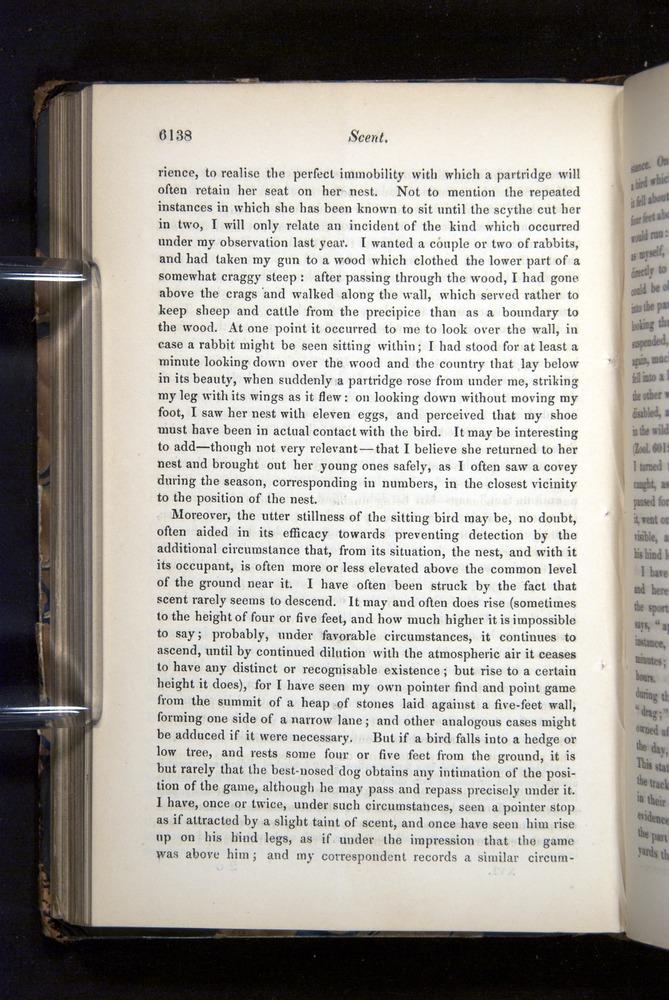 Image of Darwin-F349-1858-Zoologist-v16-06138
