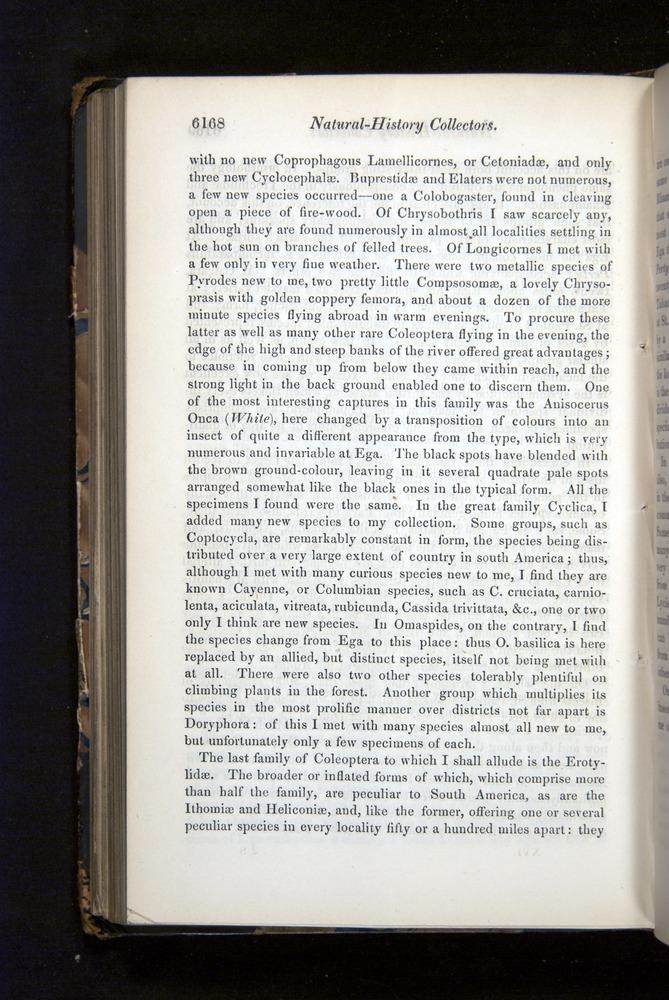 Image of Darwin-F349-1858-Zoologist-v16-06168