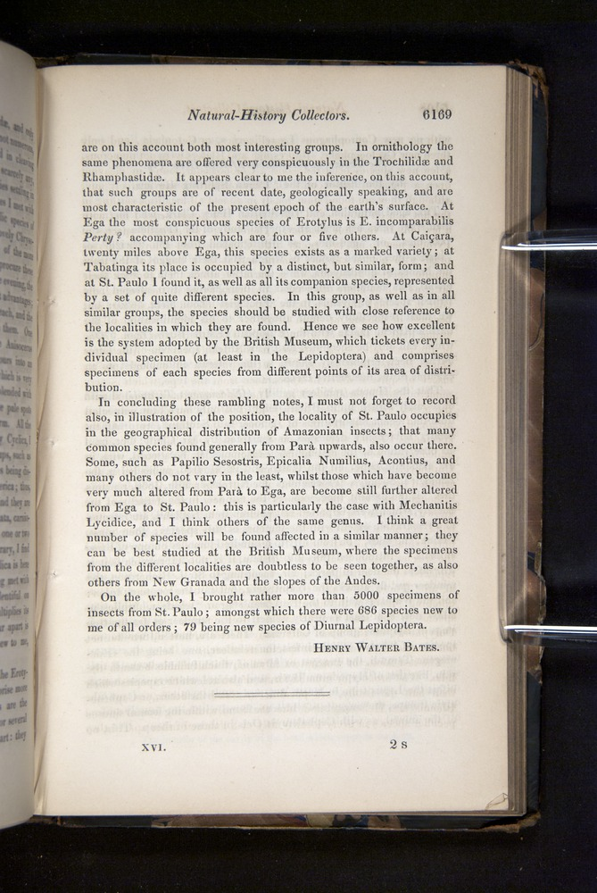 Image of Darwin-F349-1858-Zoologist-v16-06169