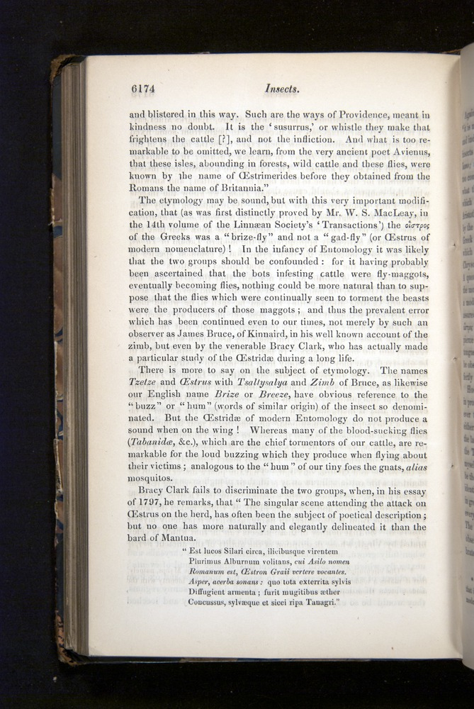 Image of Darwin-F349-1858-Zoologist-v16-06174