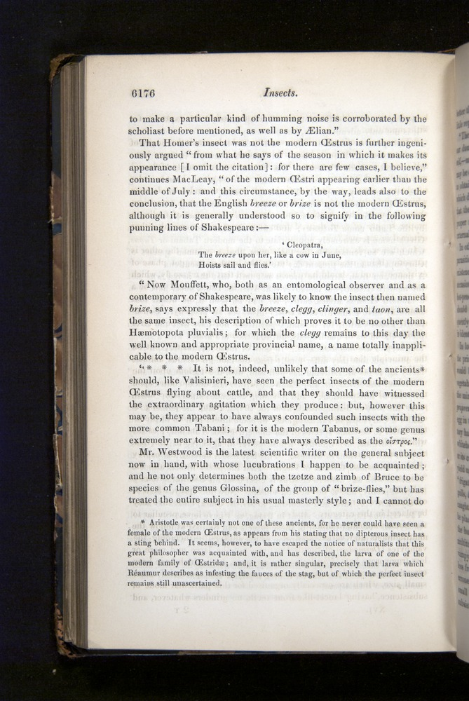 Image of Darwin-F349-1858-Zoologist-v16-06176