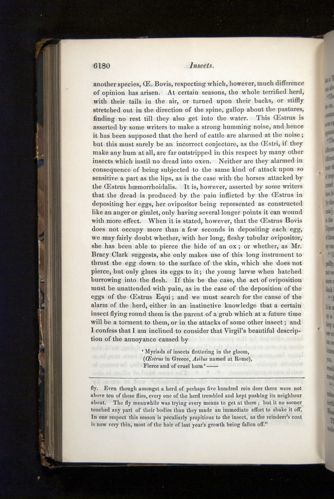 Image of Darwin-F349-1858-Zoologist-v16-06180
