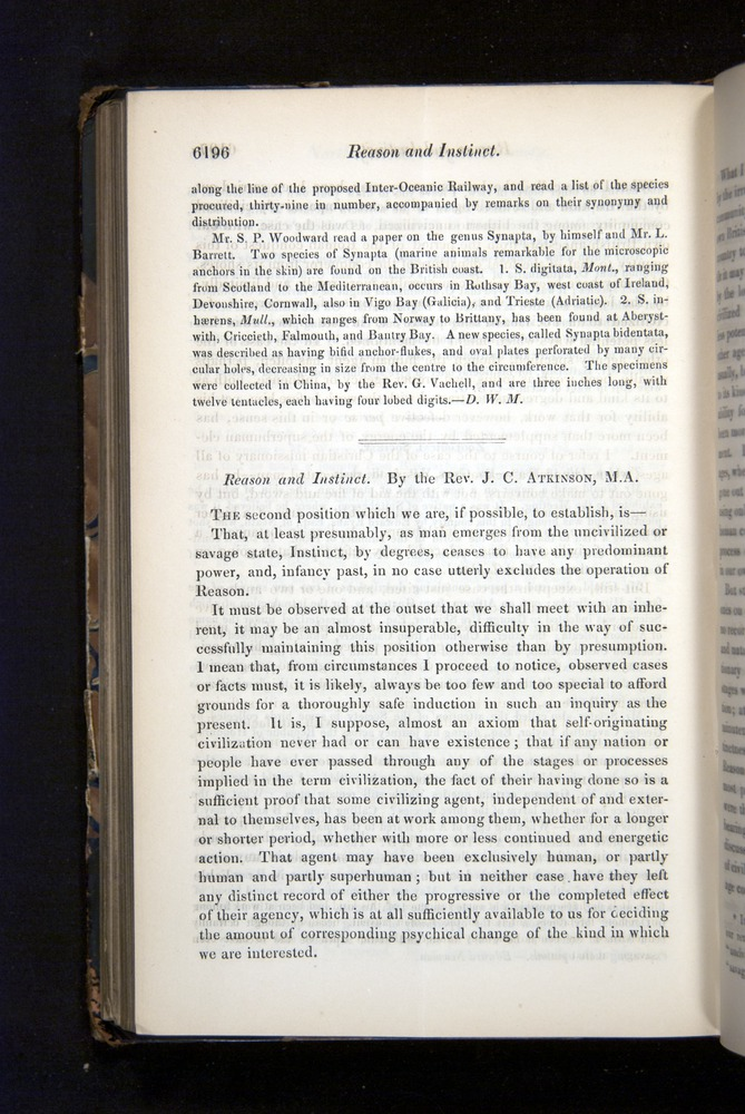 Image of Darwin-F349-1858-Zoologist-v16-06196