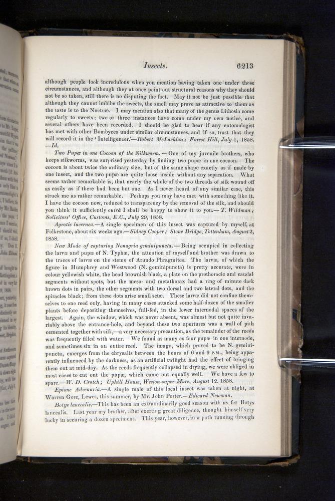 Image of Darwin-F349-1858-Zoologist-v16-06213